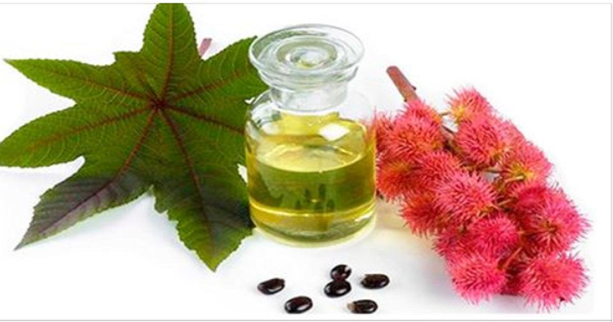 Касторовое масло для волос, ресниц и кожи