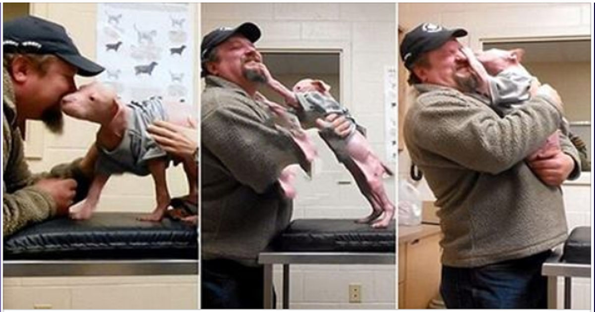 Мужчина вернулся, чтобы забрать его навсегда. Счастье пса растрогало работников приюта!