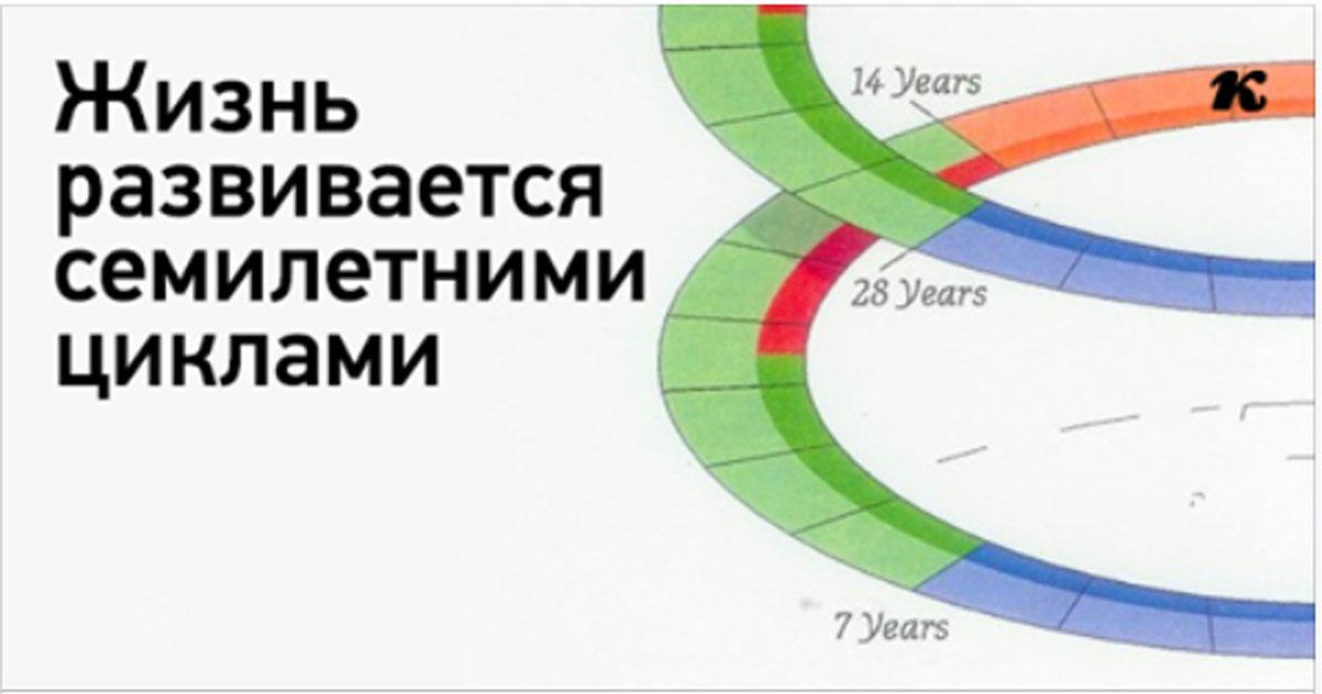 Жизнь развивается семилетними циклами