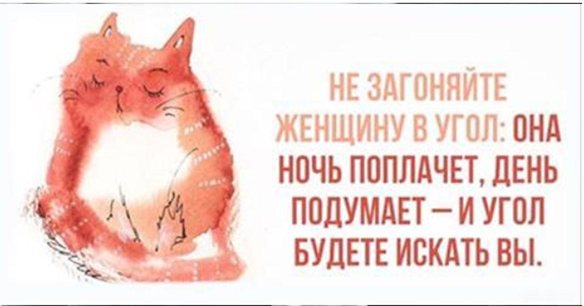 20+ открыток, понятных каждой женщине