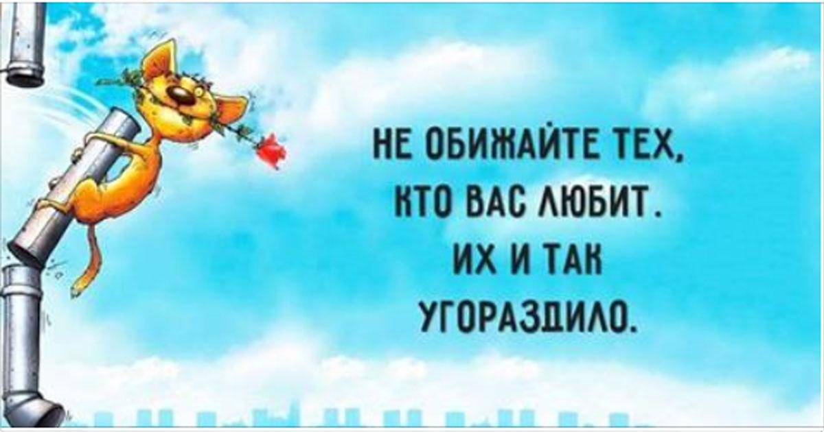 Позитивные открытки