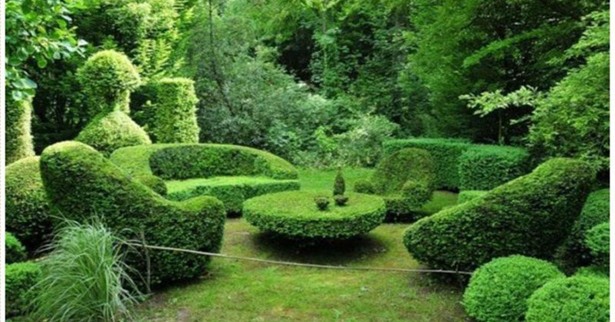 Эти скульптуры создали из кустов — просто фантастика!
