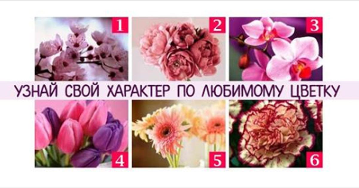 Психологический тест: узнай свой характер по любимому цветку