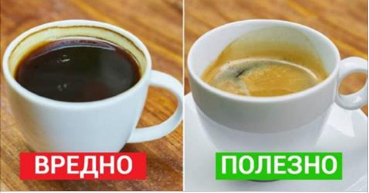 7 важных фактов для кофеманов