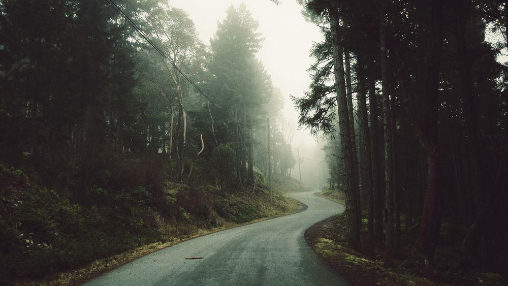 Выбранный путь мудрого странника откроет силу вашего характера