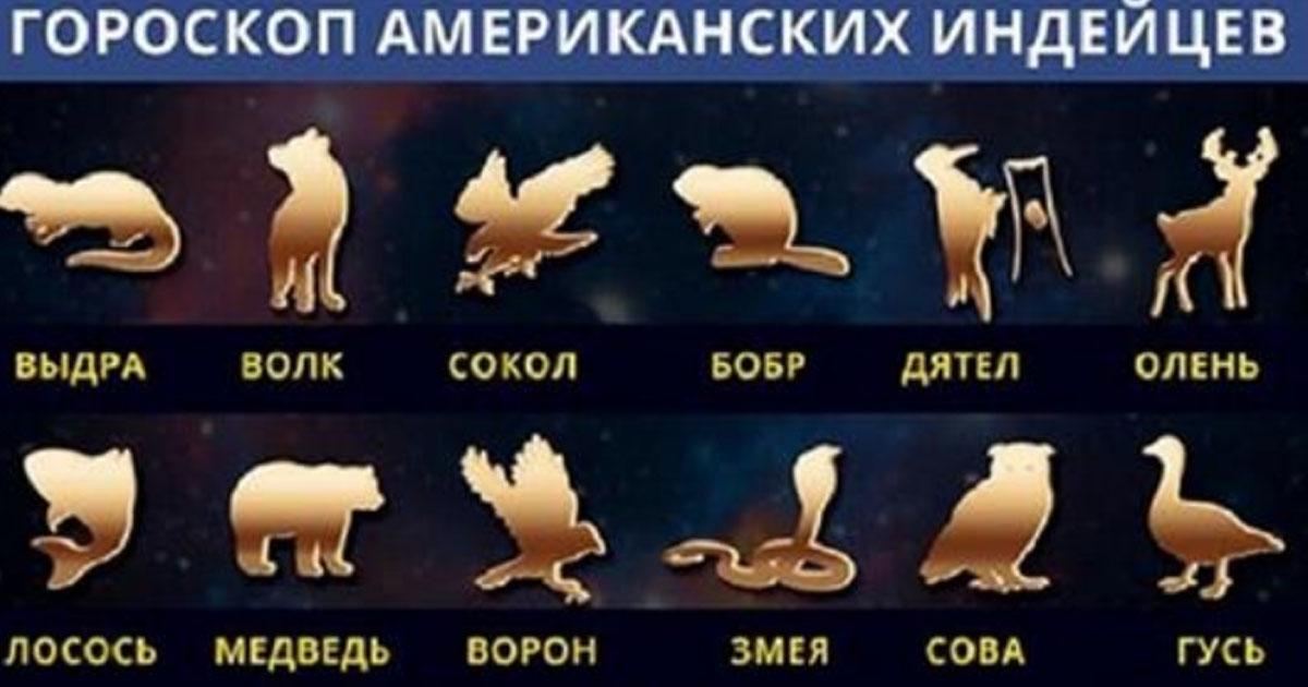 У индейцев была своя астрологическая система. Вот кем по их Зодиаку являетесь вы!