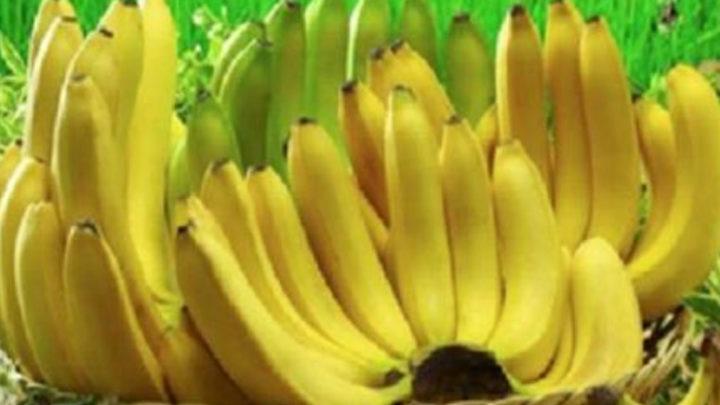 10 фактов о пользе бананов