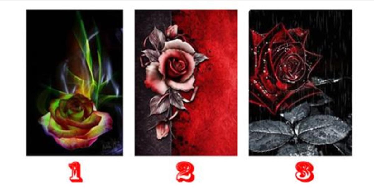 Какие у вас будут следующие 7 дней, расскажет магическая роза ночи