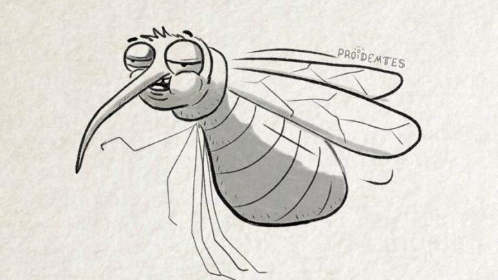 Художник создал очень остроумную и жизненную классификацию комаров, с которыми сталкивался каждый.