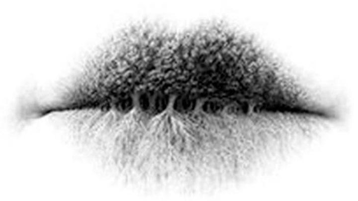 Психологический тест: что вы видите на рисунке
