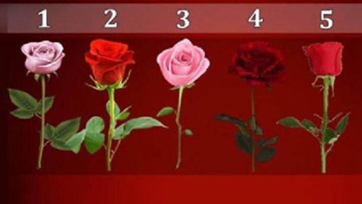 Психологический тест: выбери цветок и узнай кое-что интересное о своих желаниях