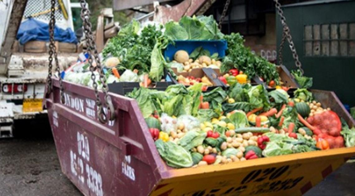 Не проданную еду в Италии возможно будут отдавать даром, а не отправлять в мусорные баки